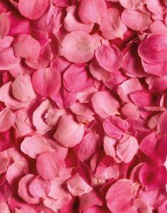 désodorisant senteur rose